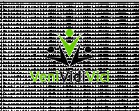 venividivici-logo.thumbnail